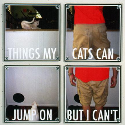 cat jumps printed