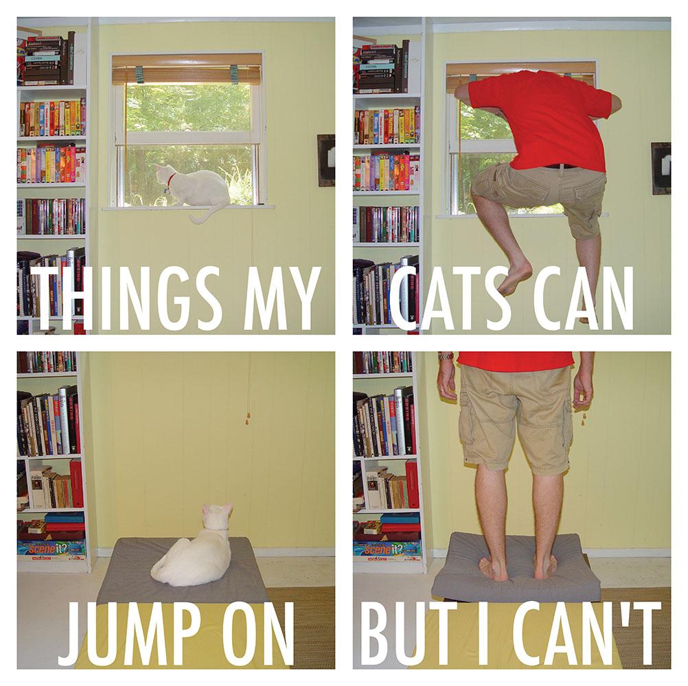 cat jumps 1
